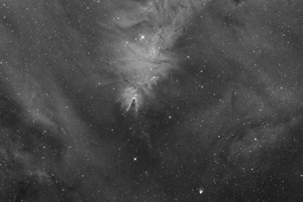 NGC 2264, la nébuleuse du cône